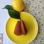 alexiabakecelona_bundt_mora&limon